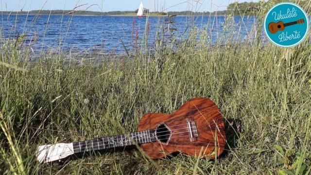 Apprendre la musique, apprendre le ukulkélé